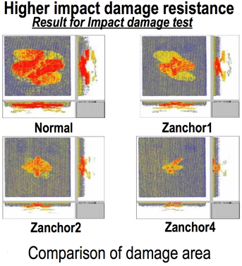 図:損傷の比較 Comparison of damage area